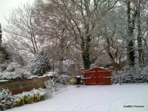 A snowy garden in Hampshire, UK before the snowman was built.